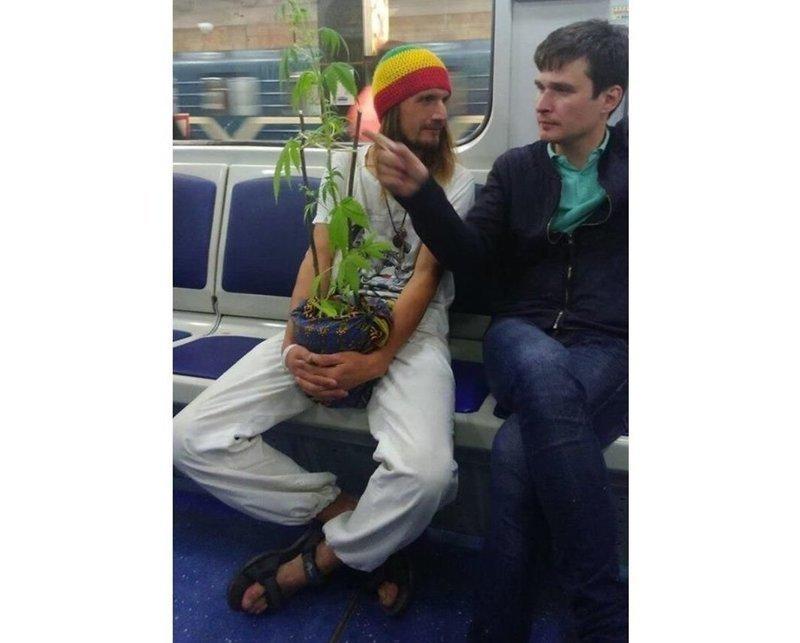 Начало посадочного сезона СПб, люди, метро, мода, москва, настроение, юмор