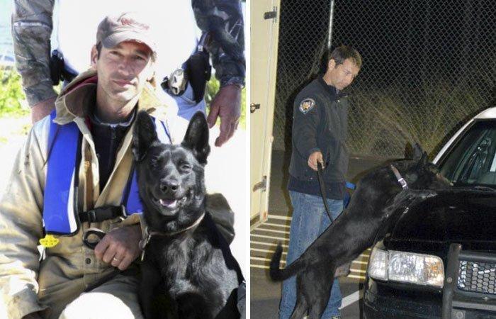 Бандиты затащили мужчину в лес и пригрозили убить его животные, истории, нападение, собака, собаки, спасение, трогательно, фото