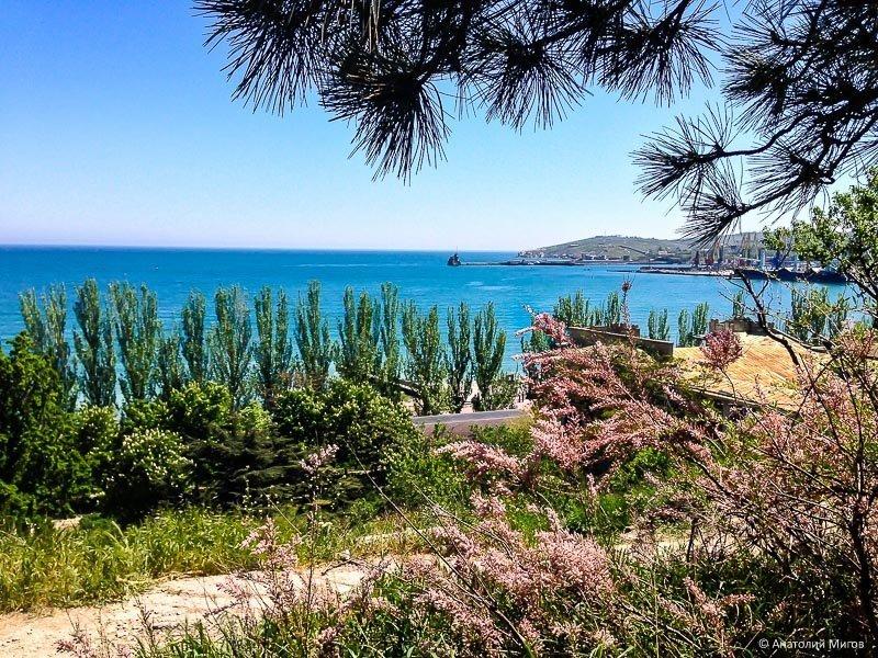 Сегодня в Феодосии крым, море, феодосия