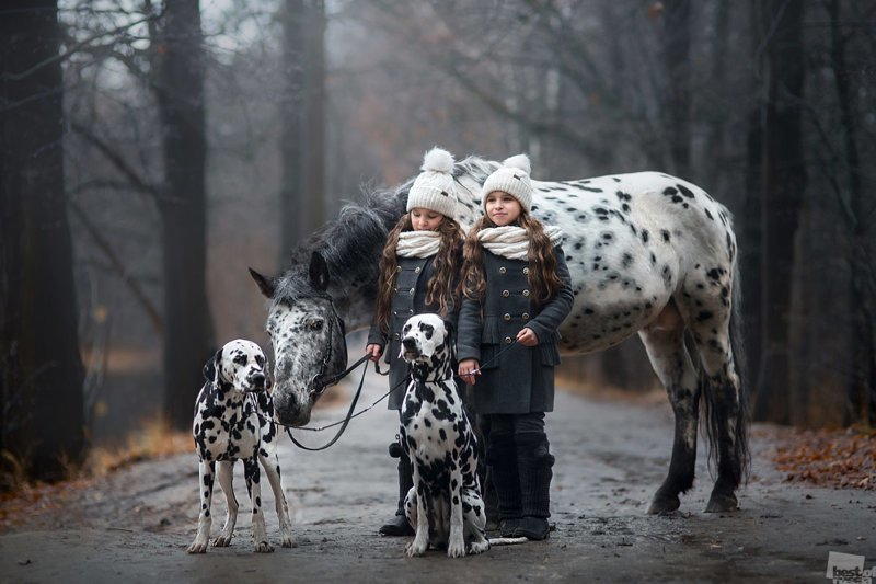 Прогулка © Юлия Шепелева / Ивантеевка   Best of Russia, в мире, кадр, конкурс, люди, россия, фото