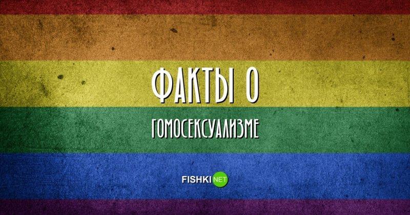 Правдивые факты о гомосексуализме гомосексуализм, интересные факты, подборка фактов, традиции, факты