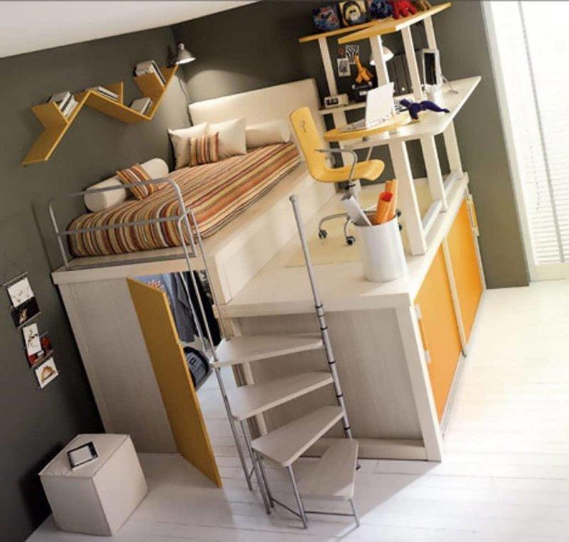 Крутая идея для небольшой комнаты день, животные, кадр, люди, мир, снимок, фото, фотоподборка