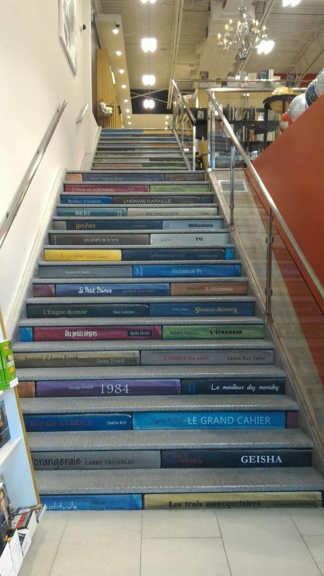Лестница с книгами день, животные, кадр, люди, мир, снимок, фото, фотоподборка