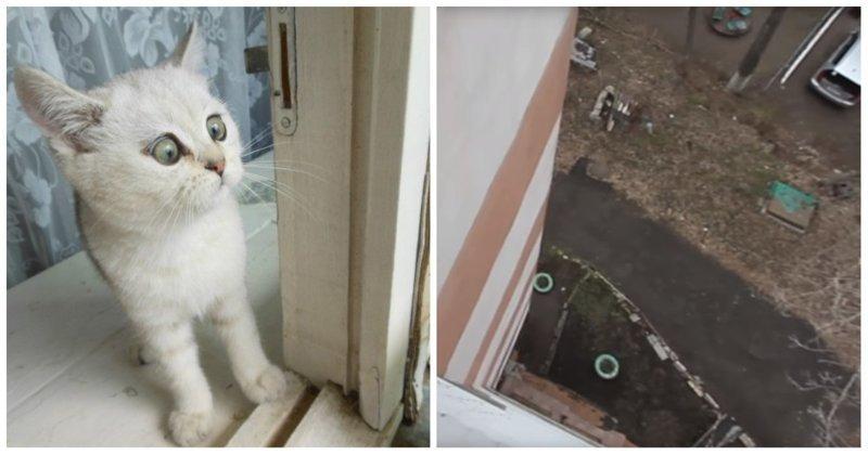 Если бы Человек-паук жил в России видео, видеомонтаж, высота, прикол, россия, человек паук, юмор