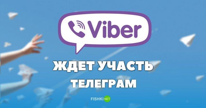 Viber может разделить участь Telegram, и стать самым популярным месседжером Telegram, Viber, ynews, Минкомсвязи РФ, блокировка, интересное, роскомнадзор
