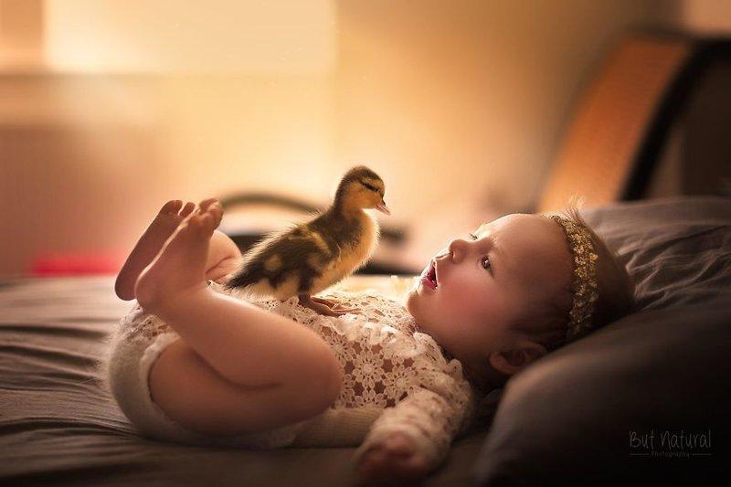 Чтобы преодолеть депрессию на фоне смерти любимца, фотограф начала снимать младенцев с другими животными - это помогло ей справиться с потерей. дети, животные, малыши, мило, мимиметр, младенцы, фото, фотографы