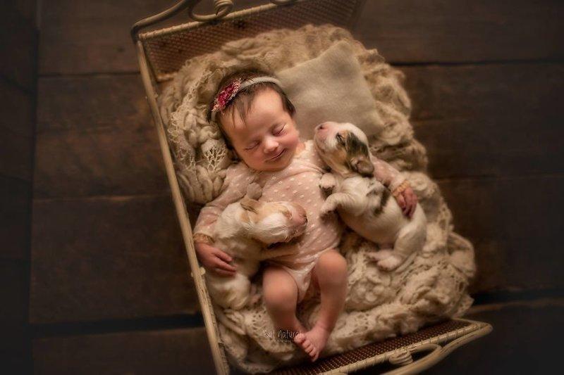 """По словам Суайты, животные очень важны в нашей жизни, а особенно - в жизни маленьких детей. """"Животные помогают нам поддерживать связь с нашим внутренним ребенком"""", - говорит фотограф. дети, животные, малыши, мило, мимиметр, младенцы, фото, фотографы"""