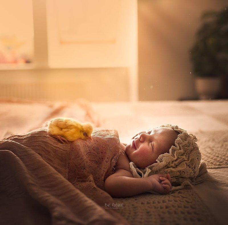Сплошное умиление: индийский фотограф снимает малышей с животными дети, животные, малыши, мило, мимиметр, младенцы, фото, фотографы