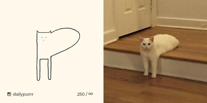 Когда все думают, что ты рисуешь какую-то хрень, а на самом деле реалистичных котов art, кот, кошки животные, рисунок, смешное, художник
