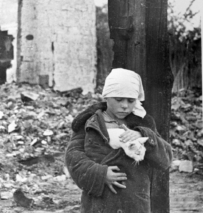 10. После первой бомбардировки города Велика Отечественная война, история, фотографии