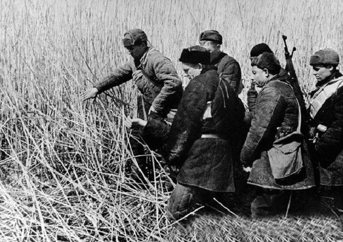 2. Война унесшая жизни миллионов  Велика Отечественная война, история, фотографии