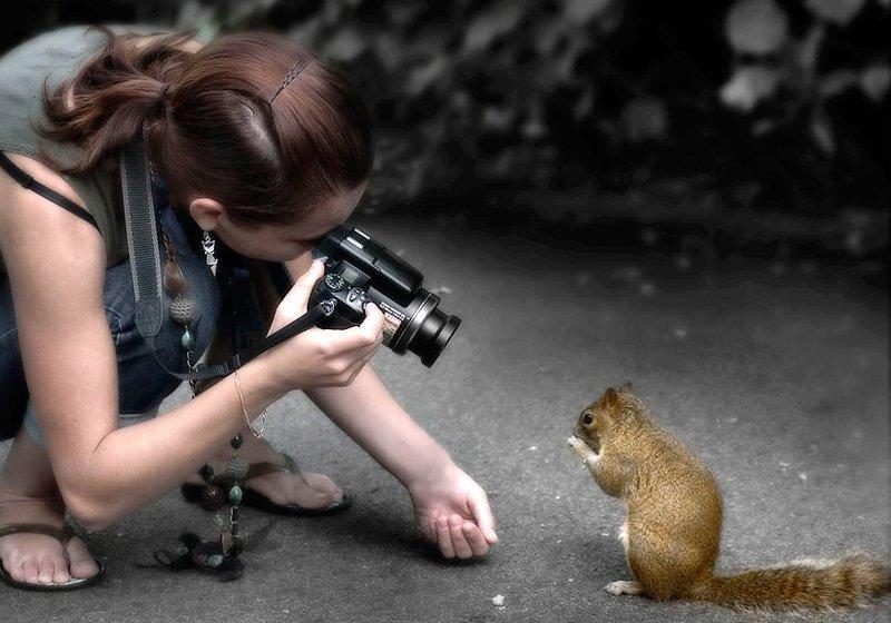 За хороший кадр способны на все! охота, фото, фотографы