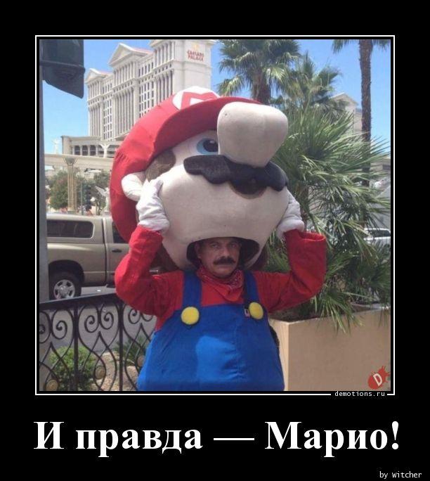 И правда - Марио! демотиватор, демотиваторы, жизненно, картинки, подборка, прикол, смех, юмор