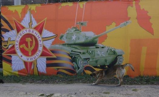 В посёлке Стрелица Воронежской области «Першинг» из США сделали символом Дня Победы 9 мая, ynews, день победы, интересное, курган, ошибки, фото