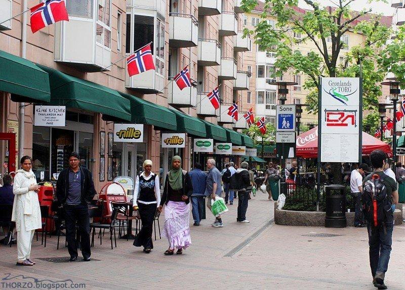Норвежцы найдут себе другую Норвегию Грённланн, мусульмане, норвегия, осло