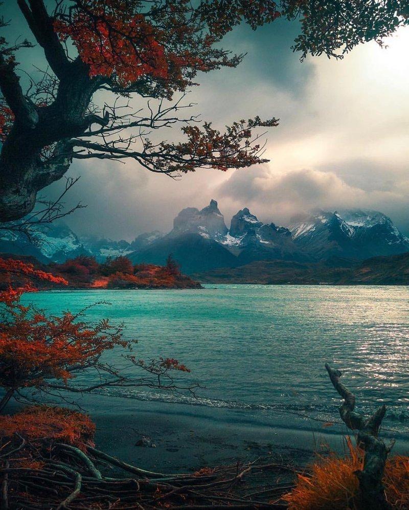 Torres del Paine, Chile красивые места, мир, планета, природа, путешествия
