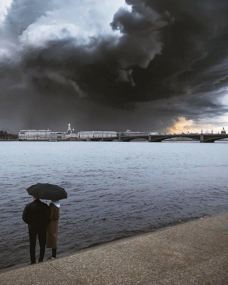 Над Санкт-Петербургом сгущаются тучи день, животные, кадр, люди, мир, снимок, фото, фотоподборка