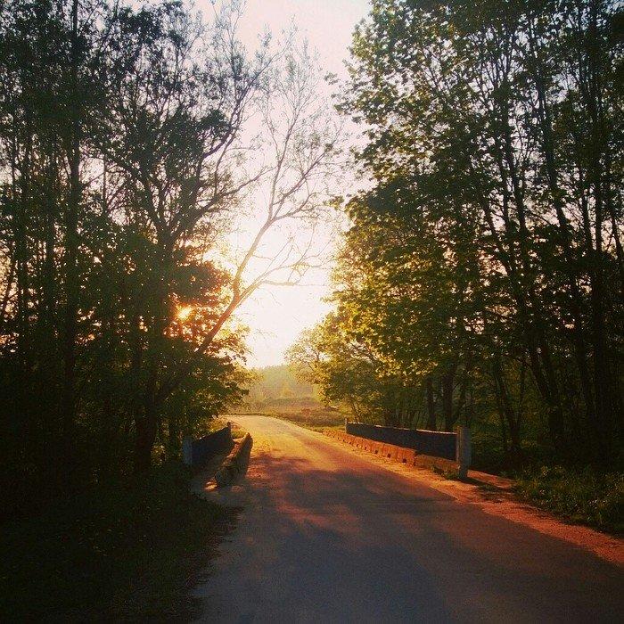 На закате день, животные, кадр, люди, мир, снимок, фото, фотоподборка