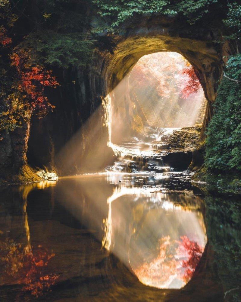 Тиба, Япония день, животные, кадр, люди, мир, снимок, фото, фотоподборка