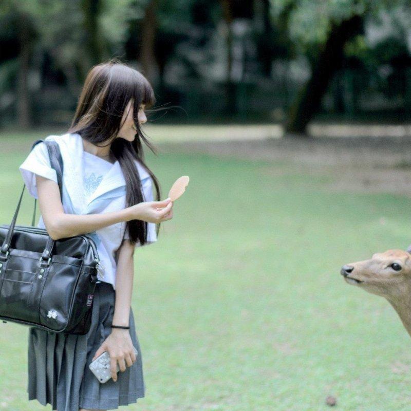 Дразнишь? день, животные, кадр, люди, мир, снимок, фото, фотоподборка