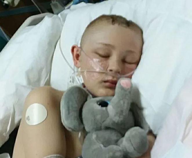 Трентон получил тяжелую черепно-мозговую травму после того, как ему на голову упал автоприцеп, в котором он ехал Трентон МакКинли, в мире, история, кома, люди, чудо