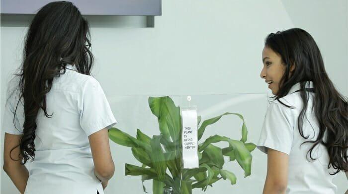 В поддержку Международного дня борьбы с травлей компания IKEA провела такой эксперимент ikea, растение, результат, травля, ученик, школа, эксперимент
