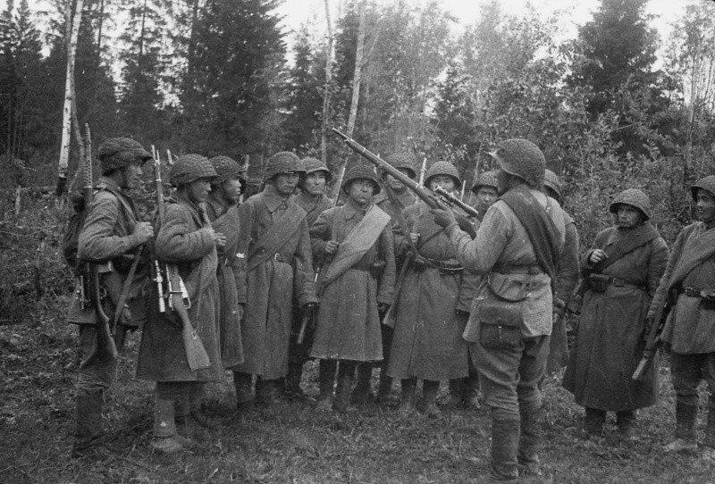 Особенно отличилась в битве за Москву Панфиловская дивизия 9 мая, вов, герои Великой Отечественной войны, день победы, чтобы помнили