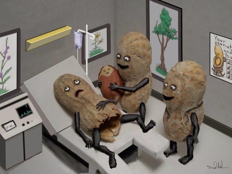 Рождение арахиса  арахис, дизайн, искусство, комиксы, художник