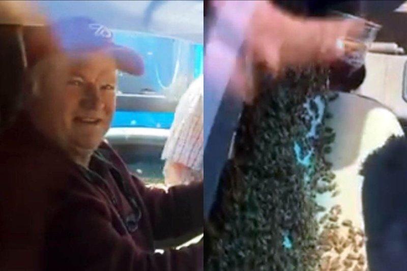Американец проехался с 3 тысячами пчёл в кабине грузовика видео, грузовик, насекомые, неожиданно, пасечник, пчёлы, фото