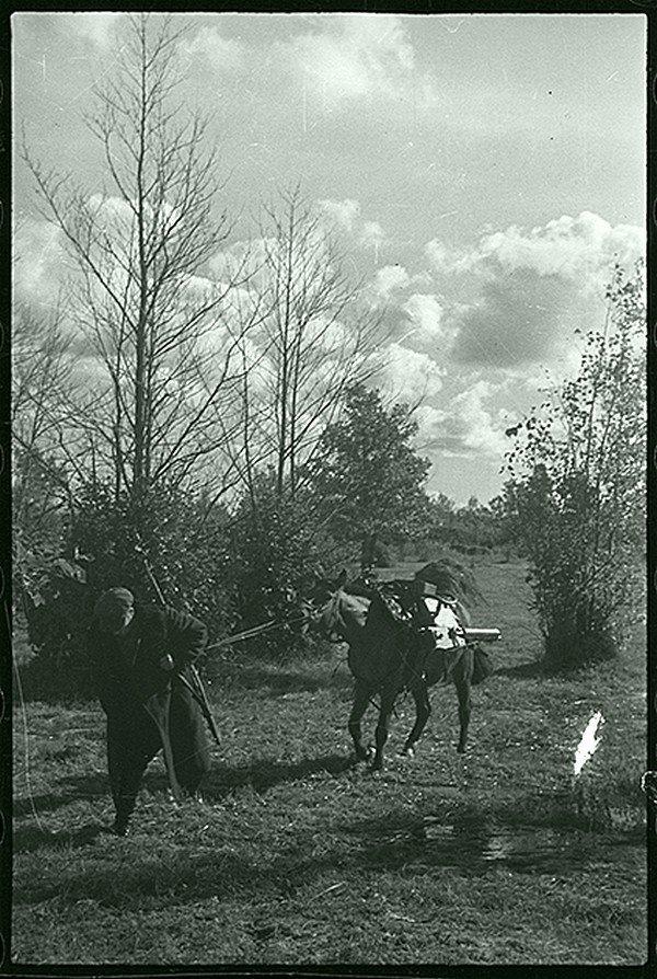 Партизаны с пулеметами на высоте. Ленинградская область, 1942. Великая Отечественная  война, СССР, история