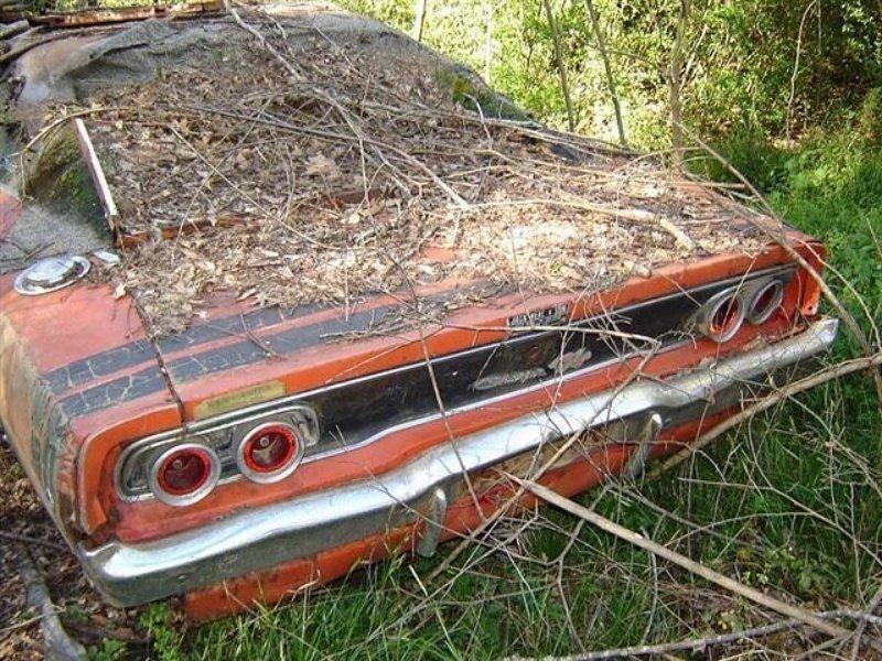 Dodge Charger авто, автомобили, заброшенные автомобили, машины