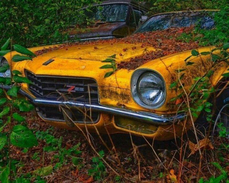 Chevrolet Camaro Z/28 авто, автомобили, заброшенные автомобили, машины