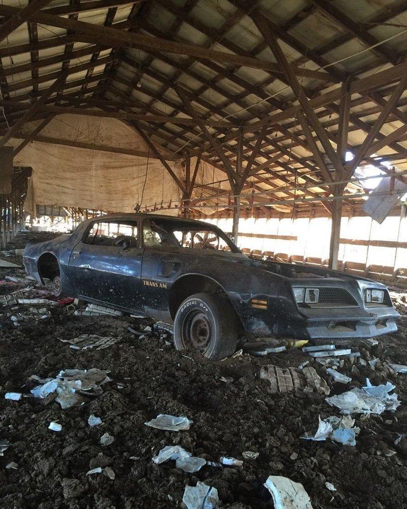 Pontiac Firebird Trans Am авто, автомобили, заброшенные автомобили, машины
