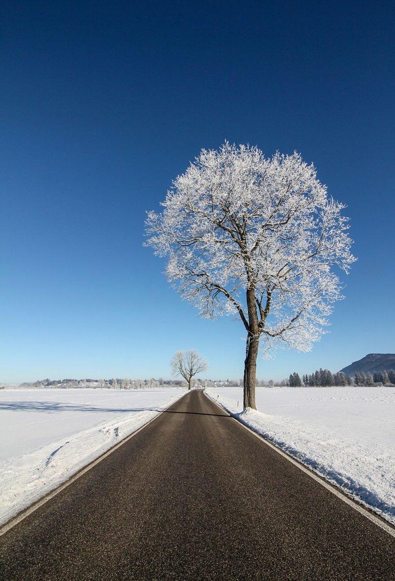 Нойшванштайн, Германия Кругосветное путешествие, интересно, мир в кармане, от Земли до Луны, приключения, путешествия, страны и города, увлекательно
