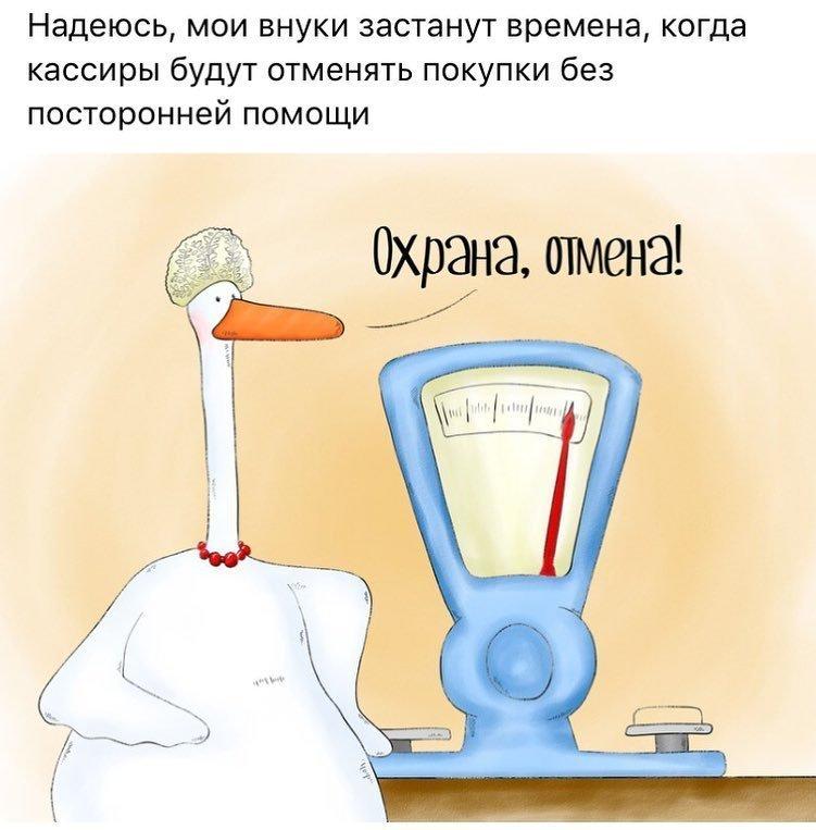 Циничные комиксы от обыкновенного гуся, который смешно рассказывает о суровой реальности нашей жизни Надя Кушнир, гусь, забавно, иллюстрация, прикол, рисунки, юмор