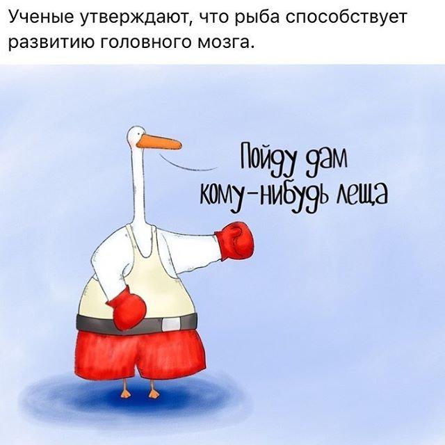Смешные картинки про гуся
