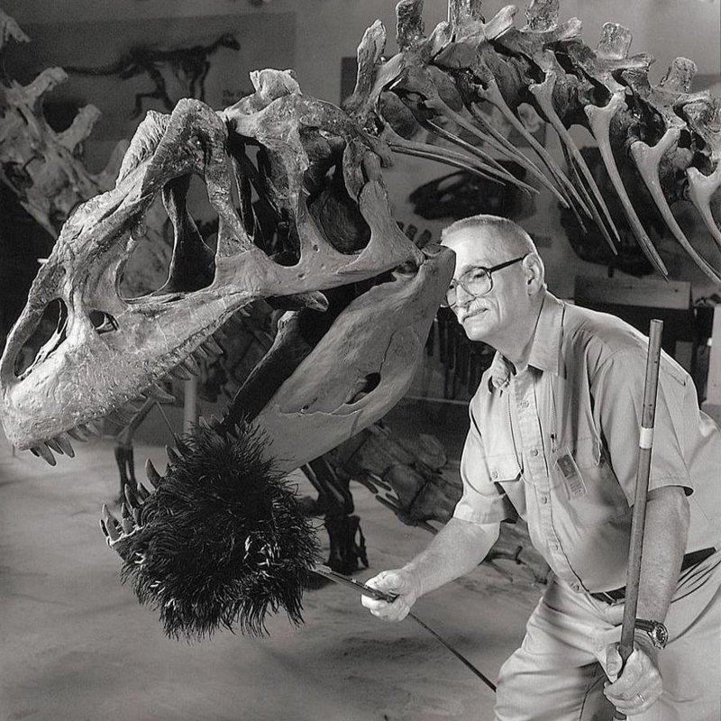 Чистильщик динозавра профессия, специальность, странное