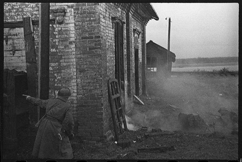 Потерянные снимки Великой Отечественной СССР, война, история