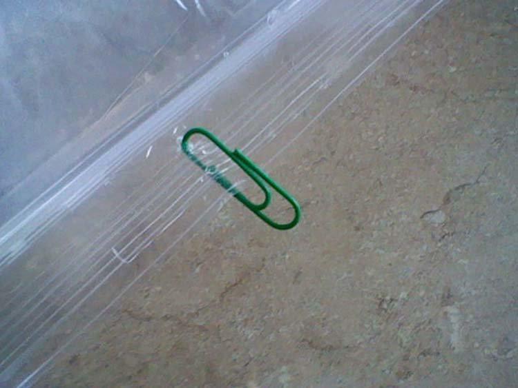 Этот простой способ поможет вам отогнать назойливых мух от вашего дома Хитрость, идея, изобретение, муха, познавательно, совет