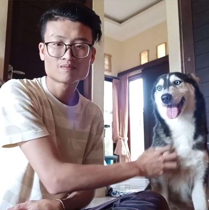 Мужчина поделился снимками невероятного преображения собаки бали, животные, история, собака, спасение, фото, хаски