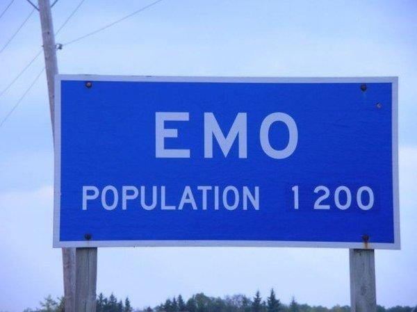 Вымирающий вид 2007, 2007 год, молодёжные субкультуры, прикол, субкультуры, эмо, юмор