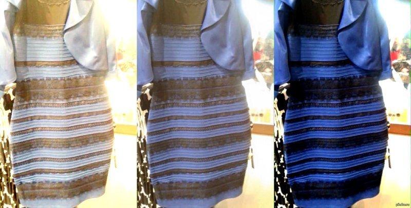 Какого цвета эти кроссовки? Новый спор! ynews, интересное, интернет, какого цвета, кроссовки, спор, фото