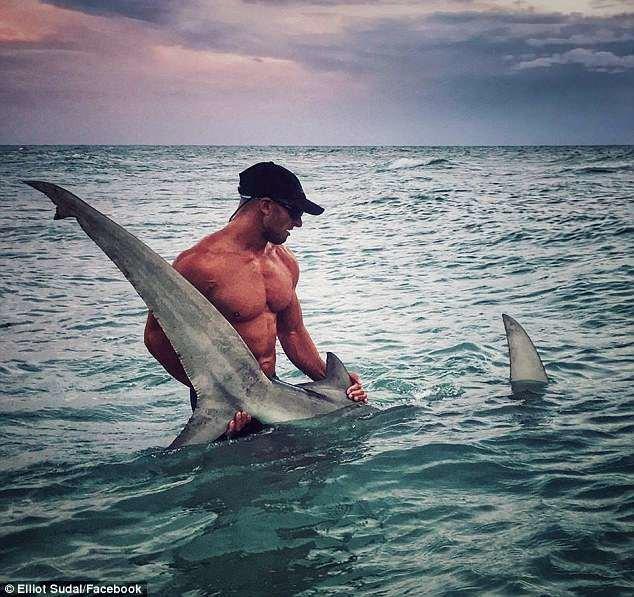 Какая акула? Давайте кубики! Мускулистый рыбак из Флориды Эллиот Судал покоряет женские сердца акула, акула молот, вирусные фото, рыбак, рыбалка, рыбы, спортсмен, фото