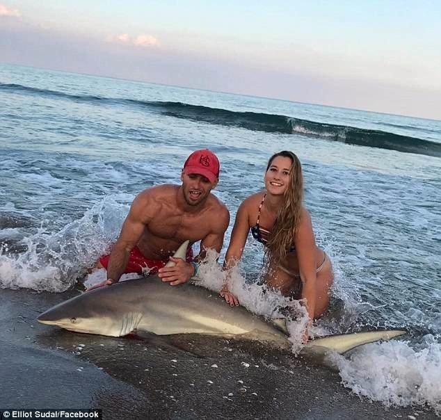 Парень уже четыре года работает в национальном управлении океанических и атмосферных исследований. Только за последний год он поймал около 500 акул. акула, акула молот, вирусные фото, рыбак, рыбалка, рыбы, спортсмен, фото
