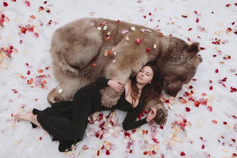 """Один из известных героев фотосессий Ольги - ручной медведь Степан, которого  в возрасте трех месяцев """"приютила"""" семейная пара - Светлана и Юрий Пантелеенко девушки, животные, опасно, природа, фото, фотограф, фотосессии, хищники"""