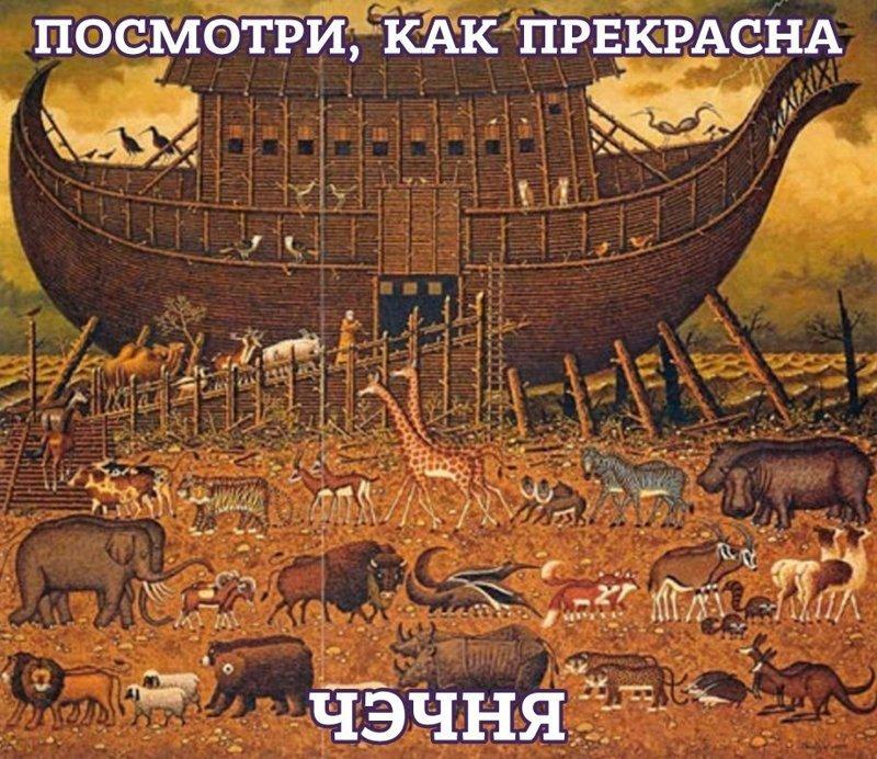 В Чечне нашли Ноев Ковчег: видео ynews, Всемирный потоп, Марат Макажо, исследования, ноев ковчег, открытия, чечня