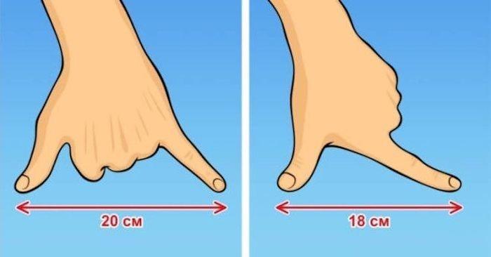 6.    Измерить длину небольших предметов без линейки знания, факты, хитрости