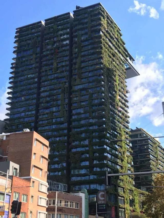 Зеленый небоскреб день, животные, кадр, люди, мир, снимок, фото, фотоподборка