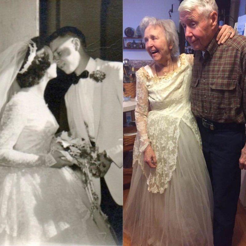 63 года в браке день, животные, кадр, люди, мир, снимок, фото, фотоподборка