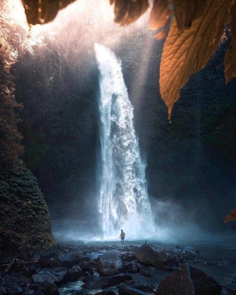 Водопад день, животные, кадр, люди, мир, снимок, фото, фотоподборка